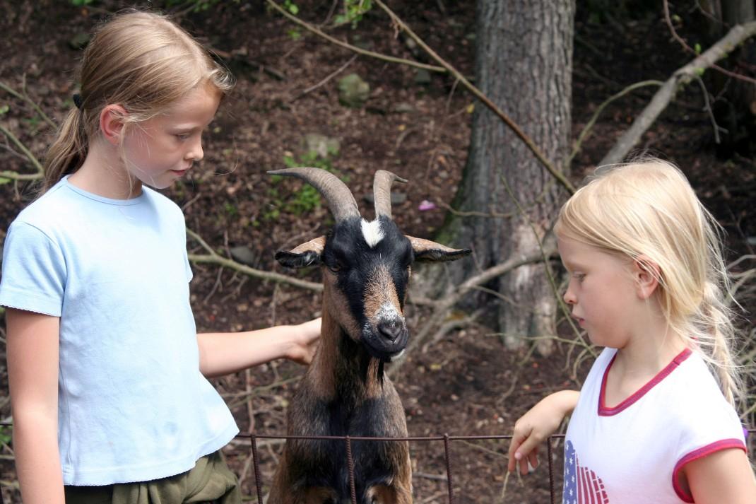 two girls with goat